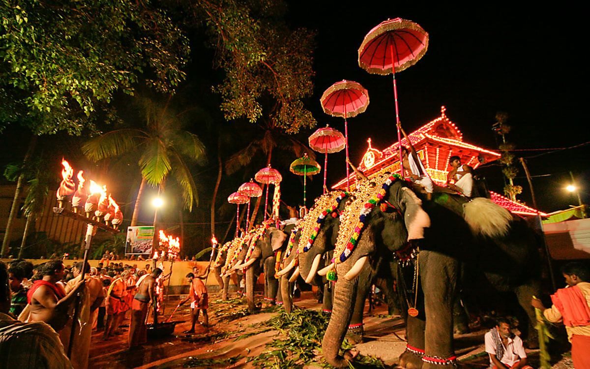 Siddiq blog - Pooram elephants